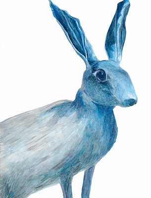 Hare, from the Collection of the Zoological Museum of Zurich University, 2010